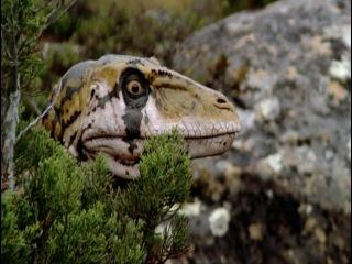BBC: Прогулки с динозаврами (озв. Н. Дроздов) 4-я серия
