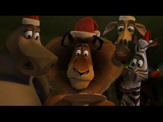 Отрывок из Рождественского Мадагаскара:)