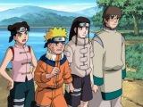 Наруто 1 сезон 163 серия (2x2)