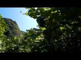 Мое путешествие на сказочные острова Пхи-Пхи, где снимался фильм