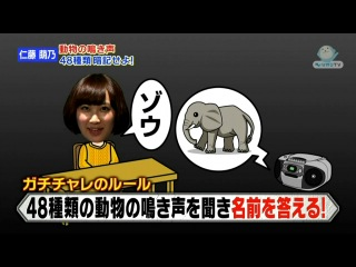AKB48 no Gachinko Challenge #32 от 15 февраля 2013
