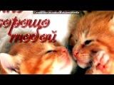 «• ФотоМагия приложение» под музыку ОЛЯ....эта песня тебе)))спи солнышко))) - спокойной ночи, любимая. Picrolla