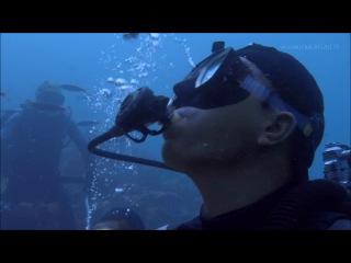 BBC: South Pacific: Fragile Paradise - Тайны Тихого океана: Хрупкий рай