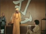 36 безумных кулаков  Blood Pact  Karate Killer  Master and the Boxer San shi liu mi xing quan (1977)