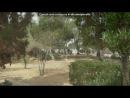 «тунис 2012» под музыку Lil Jon - супер басс 20 000 ват бас для авто. Picrolla