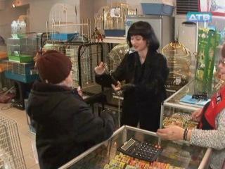 Лидия Красноружева - Голые и смешные - Скажите, мне идёт этот ошейник