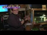 YNN [NMB48 CHANNEL] Kamieda Emika Presents - Зоотерапия. Часть 4