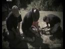 Братья по трясине Крокодилы озверели 2011