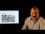 Кунгуров, Алексей - Искажение истории. Часть 10. Удар