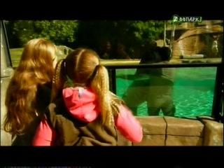 Бинди: девочка из джунглей / Bindi: The Jungle Girl (2 сезон, 5 серия из 5) Кумир дома на дереве