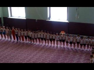 Парад  по спортивной  гимнастеки