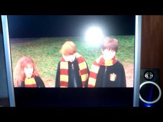 Гарри Поттер(гремлин)