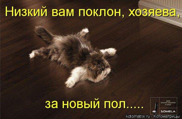 http://cs534.vkontakte.ru/u43692401/101261245/x_33a5de0d.jpg