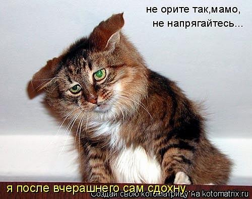http://cs534.vkontakte.ru/u43692401/101261245/x_79a55586.jpg