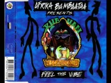 AFRIKA BAMBAATAA PRES,KHAYAN,FEEL THE VIBE (CLUB MIX)(1994)