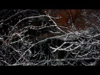 Первый снег в Малаховке