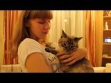 Вика и кот