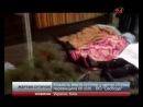 Кількість жертв сутичок у центрі столиці перевищила 60 осіб Свобода