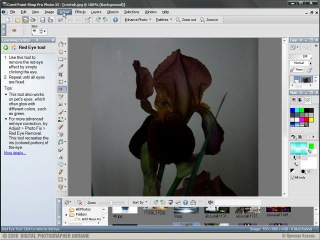 55 видеоуроков по Photoshop - Урок 45 (Изучаем Corel Paint Shop Pro Photo)