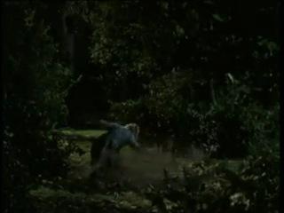 Баффи / Buffy - ТВ-Ролик (канал