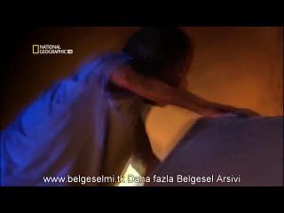 Uçak Kazası Raporu Tanıtım Videosu (HD)