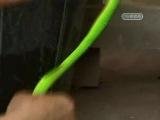 Как делается водка со змеей и скорпионом)