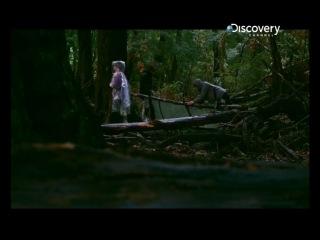 Беар Гриллс: Выбраться Живым HD 720p / Get Out Alive with Bear Grylls (1x05)