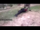 отрезание голов на скорость в сирии