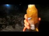 Как пьют пиво на Севере Сахалина