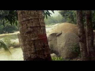 Вместе навсегда / Таиланд (Серия 3 из 4) [2013, Боевик, SATRip]