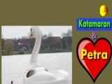 Фактомания 22-й выпуск - ПЕТРА И КАТАМАРАН / черный лебедь, любовь, Германия, Мюнстер, Аазее, водохранилище, озеро, трогательно