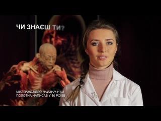 выставка Тайны тела