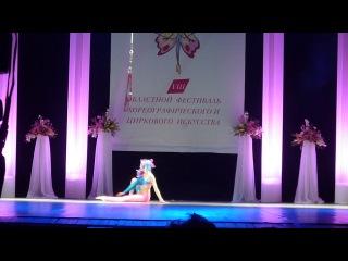 Воздушная гимнастика на петлях цирк
