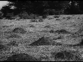 Обучающий фильм для снайперов вермахта
