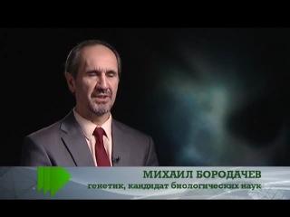 Живая тема: Лесные монстры (05.08.2013 / 18.03.2013)