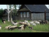 Над Вяткой рекой-песня Олега Макина