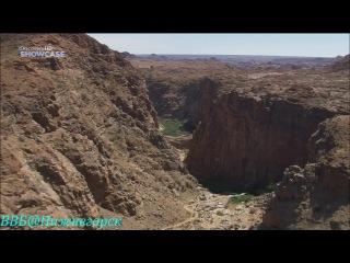 BBC «Прогулки по Южной Африке (4) - Пустыня Калахари» (Документальный, 2010)