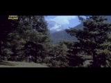 Мелодия любви / Tarana (1979) Митхун Чакраборти