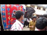 Rameswaram / Tamil Nadu / India