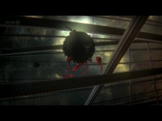 BBC: Внутренняя Вселенная: Тайная жизнь клетки(2012)
