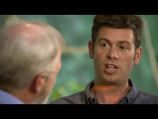BBC: Планета муравьёв: Взгляд изнутри   HD