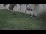Imagine Dragons - Radioactive - PARKOUR STYLE! - Autumn 2012 HD.mp4