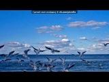 «ощгщшд» под музыку Павел Воля и Гарик Мартиросян - Наша Россия - Страшная Сила (Музыка из сериала