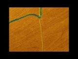Фенечки - основные узлы