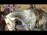 YNN [NMB48 CHANNEL] Kamieda Emika Presents - Зоотерапия. Часть 2