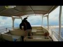 National Geographic: Неисследованные глубины [1  5] (2012) SATRip