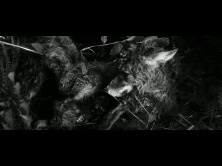 Антихрист (реж. Ларс фон Триер) -фрагмент