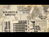 Освенцим. Путешествие в ад / Auschwitz. Journey Into Hell (2013)