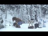 Креативная реклама стиральной машины Samsung с медведем
