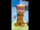 Говоряший кот
